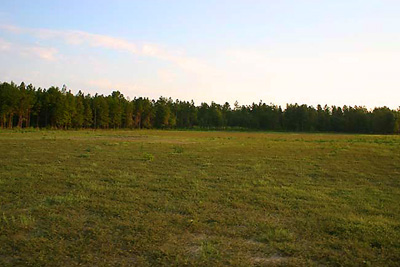 For Sale Dr Boylston Road Land Property Salley South